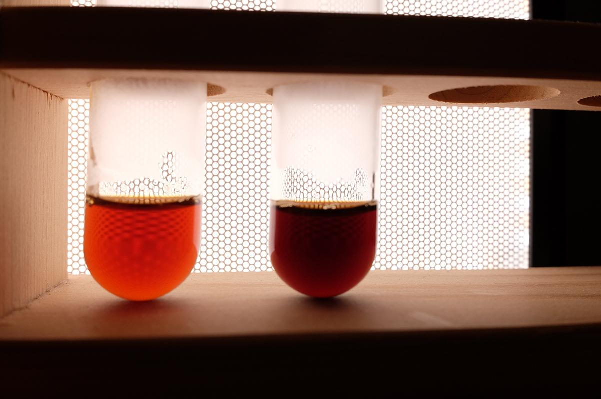 異なる焙煎度のコーヒー豆で入れたコーヒーの色