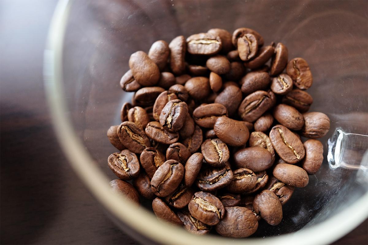パカマラ種 コーヒー豆