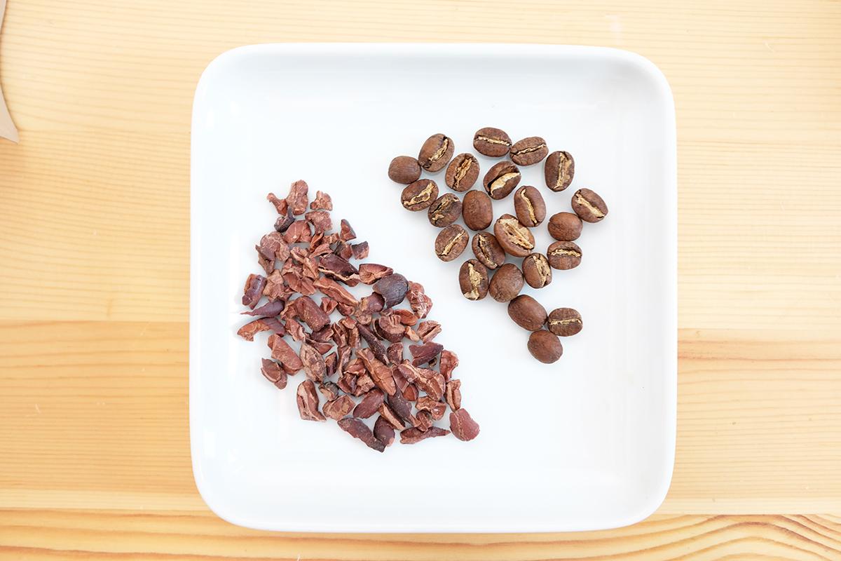 白い皿に乗ったコーヒー豆とカカオニブ